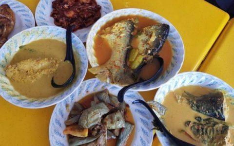 Manfaat Ikan Patin Bagi Kesehatan Tubuh